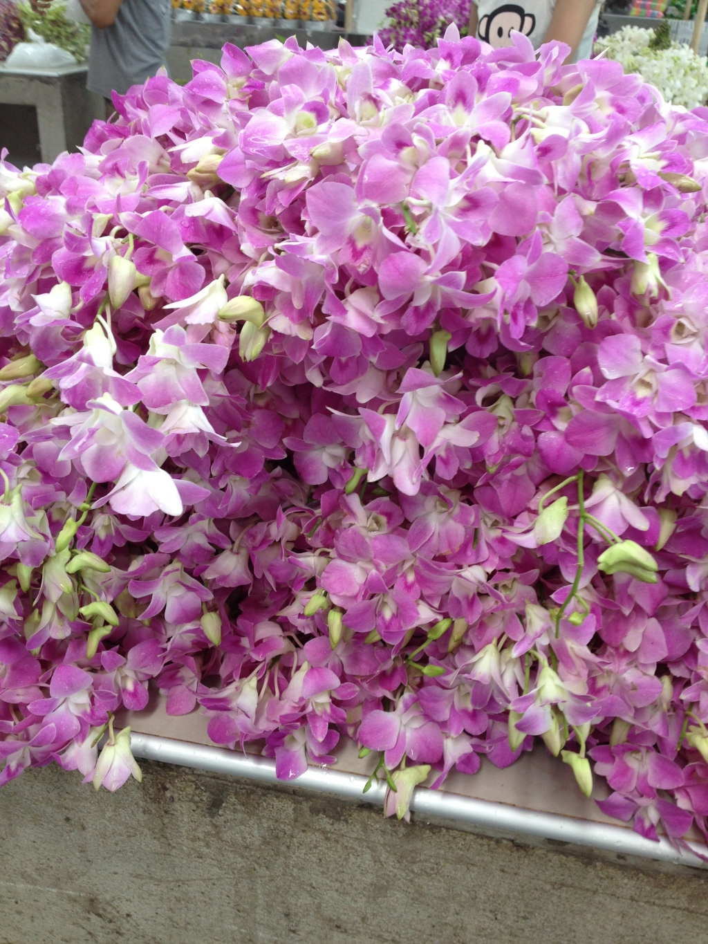 Pile of Orchids--$1 USD for a large bunch.